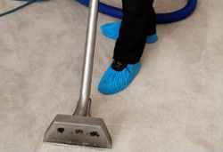 Carpet Cleaning Highbury