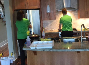 Professional Cleaning Team