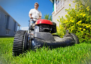 grass-cutting-highbury